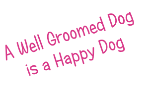 A Well Groomed Dog is a Happy Dog
